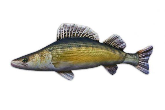 Plyšová ryba ZUBÁČ