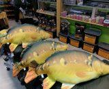Plyšová ryba MEGA KAPOR