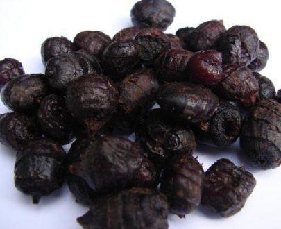 Nakládaný partikl - Fermentovaný černý tygří ořech 1l
