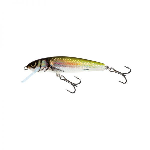 salmo wobler minnow floating holo bleak 1 1 600x600 - Salmo Wobler Minnow Floating Holo Bleak 7cm 6g plávajúci